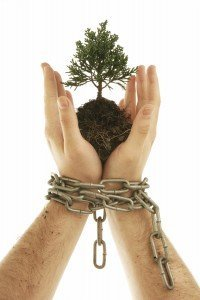 break the chains - grow your business